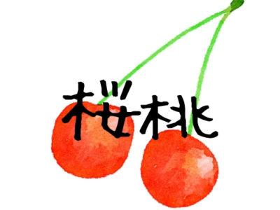 太宰 治 桜桃 あらすじ